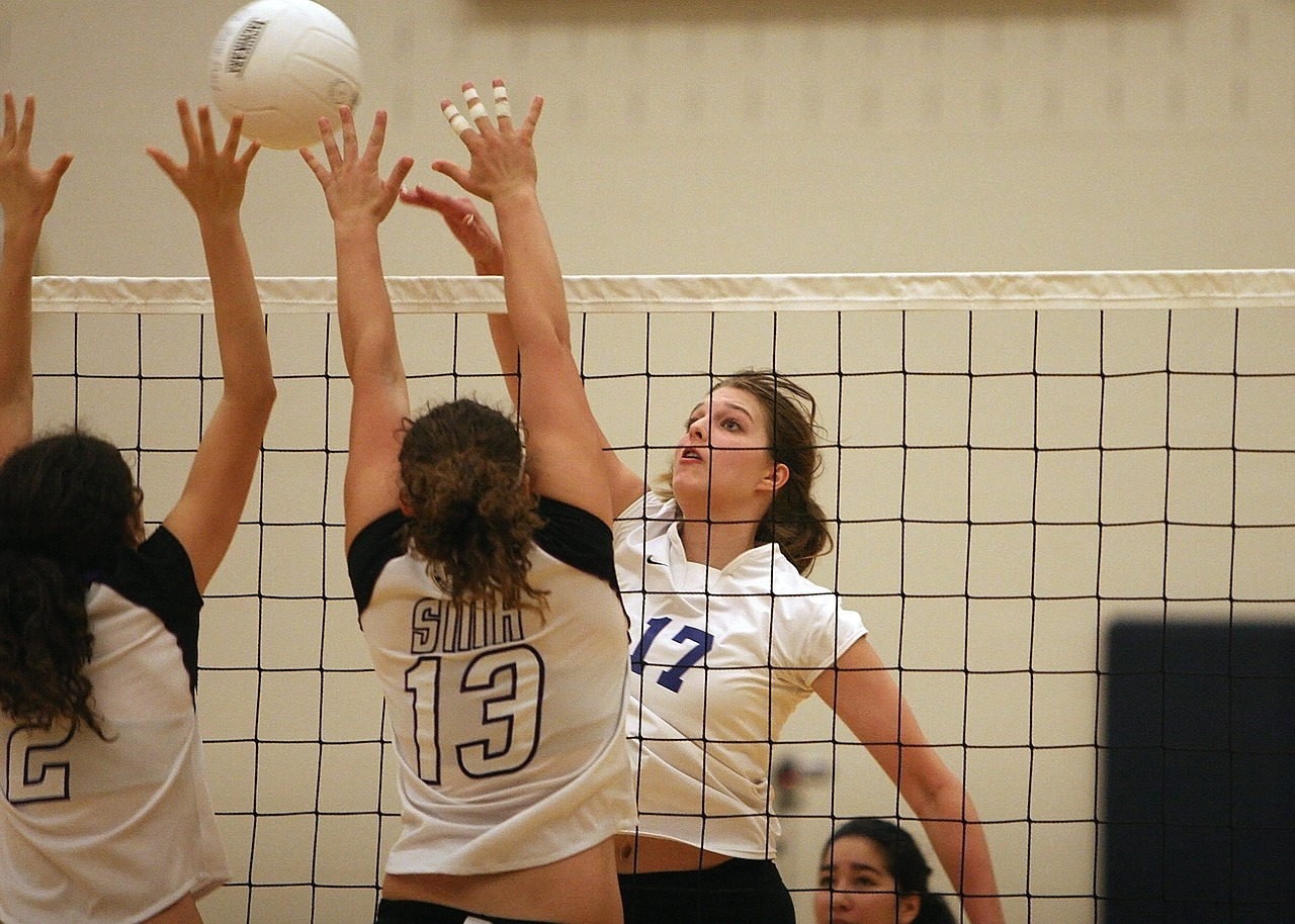 volleyball-1604584_1280.jpg